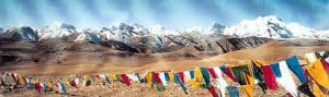 Tibetçe tercüme